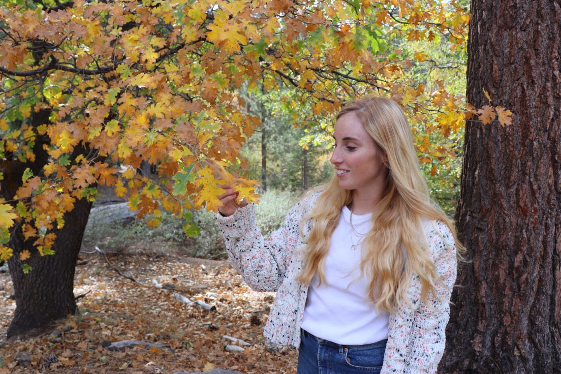 multi-colored cardigan in the fall